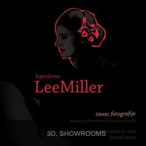 6-3d-showrooms